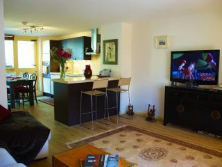 Luxury Central London Duplex Apartment - London vacation rentals