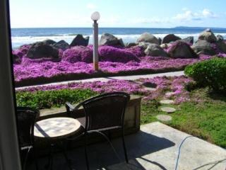 Beach Front~Best Kept Secret ~Steps To The Beach!! - San Diego vacation rentals
