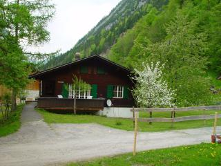 Traditional Swiss Chalet - Lauterbrunnen vacation rentals