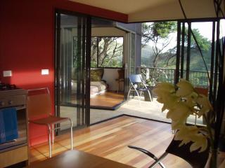 Karekare Beach Treehouse - Auckland vacation rentals