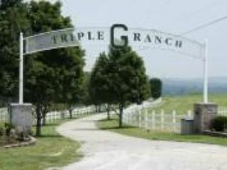 Welcome to Triple G Ranch! - Luxury Home on 450+ Acre Ranch, Groups, Reunions - Branson - rentals