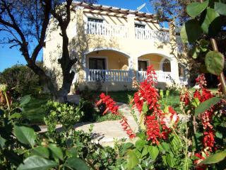 Beautiful 6 bedroom Apartment in Afionas - Afionas vacation rentals