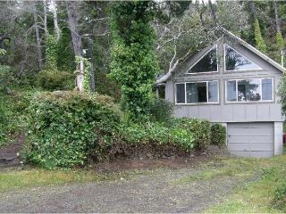 Nice House with Deck and Stove - Netarts vacation rentals