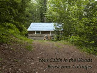 Hideaway- 2 Bedroom Lake front Cottage! - Bancroft vacation rentals