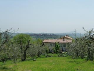 Paradiso Integrale - beautiful Umbria, the heart of Italy - Otricoli vacation rentals