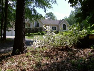 Chattahoochee River Estate - 15 min. from airport - Whitesburg vacation rentals