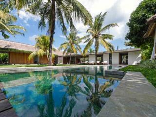 Villa CocoGroove Seminyak Bali  3-bdrm mod luxury - Seminyak vacation rentals