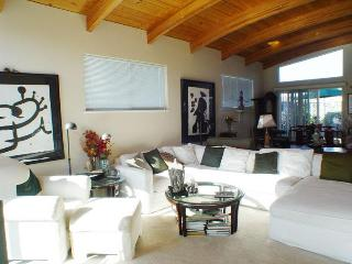 Luxurious 2000 sq. ft. houseboat in Sausalito - Sausalito vacation rentals
