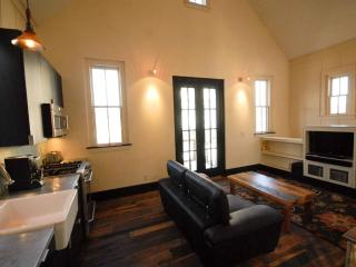 Luxurious Guest House Near River in Hip Downtown - Buena Vista vacation rentals