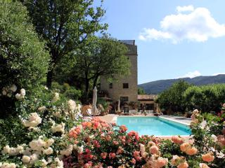 Beautiful stone tower with park and swimming pool - Spoleto vacation rentals