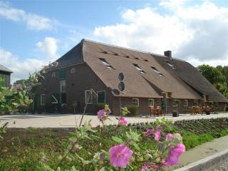 Gouda, middle of Holland  farmhouse till 15 pers. - Utrecht vacation rentals