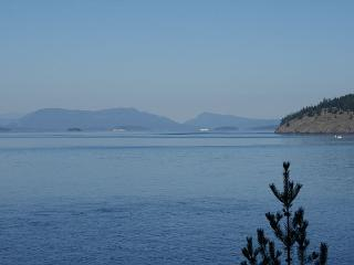BEST VALUE! WATERFRONT! PET FRIENDLY! - (Madrona House) - San Juan Islands vacation rentals