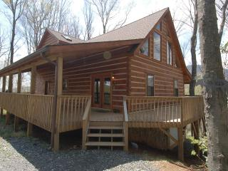Bright 4 bedroom Cabin in West Jefferson - West Jefferson vacation rentals