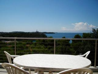 Apartments with SEA VIEW in Rovinj - Rovinj vacation rentals