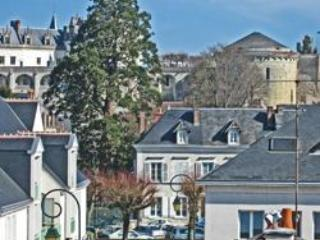 Historic Townhouse in Old Amboise with Castle View - Image 1 - Amboise - rentals