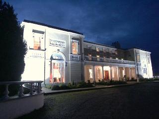 Palladian Mansion (near Dublin)   deburghmanor. - Athy vacation rentals