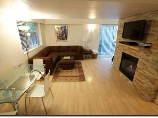 Bright 1Bdrm w Cozy Gas Fireplace On Beautiful Park - Vancouver vacation rentals