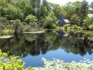 Best Price on Cape Cod - Wellfleet vacation rentals