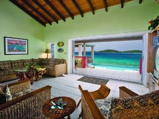 Villa Sea Star, on the beach! 3 white sand beaches - East End vacation rentals