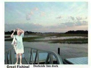 Panoramic View, Private dock on Creek, near beach! - Tybee Island vacation rentals
