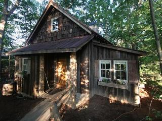 Romantic Cabin with Internet Access and A/C - Candler vacation rentals