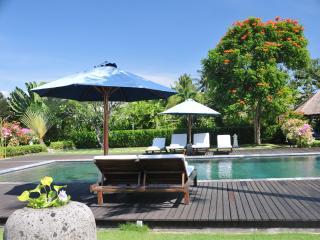 Private Vacation Rental,  Lovina Beach, North Bali - Dencarik vacation rentals