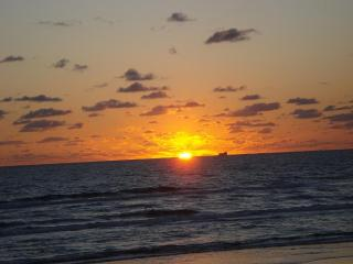Beach front South Padre Island Condo - South Padre Island vacation rentals