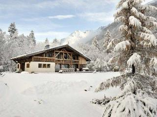 Spacious 7 bedroom Chalet in Chamonix with Deck - Chamonix vacation rentals
