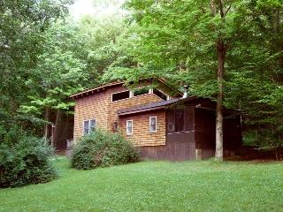 Heart of PA Wilds - secluded 3 BR mountain cabin - Clearfield vacation rentals