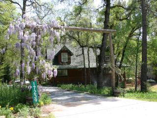 Log House on Trout Stream, Spa, Local Hiking - Grass Valley vacation rentals