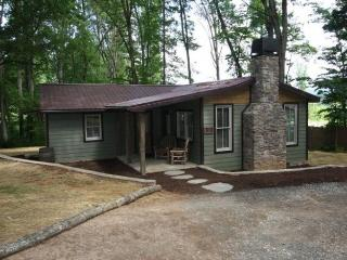 Nice 2 bedroom Cabin in Candler - Candler vacation rentals
