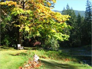 2 bedroom Cottage with Deck in Lake Cowichan - Lake Cowichan vacation rentals