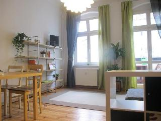 Annas Apartment in Berlin, Bright and Cozy - Berlin vacation rentals