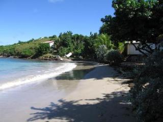 Ah Le Bonheur - St Barthelemy, French West Indies - Saint Barthelemy vacation rentals