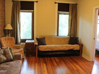 Ideal 2Bedroom Lincoln Park 1 Block to Fullerton L - Chicago vacation rentals