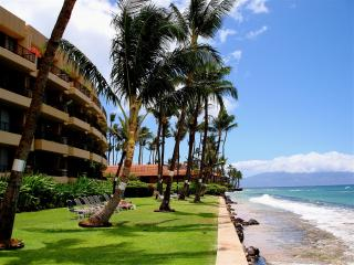 !!! JUNE SPECIAL $75 A NIGHT !!! UNBEATABLE!!! - Napili-Honokowai vacation rentals