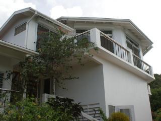 Stunning Day, Nighttime Views from Starlight Villa - Saint Kitts and Nevis vacation rentals