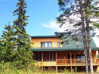 Lutsen's cutest rental - 1 mile from the ski hills - Lutsen vacation rentals