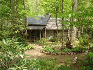 Rustic Log Cabin on Rock Creek-Very Private - Burnsville vacation rentals
