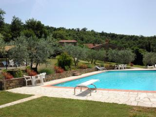 3 Cottages in an ancient Tuscan village with Pool - Castiglion Fiorentino vacation rentals