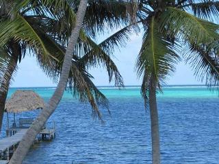Deluxe 2 Bedroom Ambergris Caye Belize Condominium - San Pedro vacation rentals