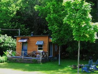 cozy, private  cabin in beautiful Adirondack valley - Paradox vacation rentals