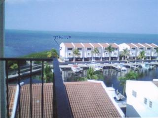 Tropical island seclusion in the Florida Keys - Tavernier vacation rentals