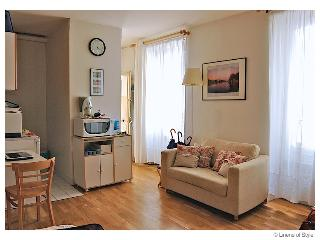 Studio Apartment in Ideal Left Bank of Paris - Andresy vacation rentals