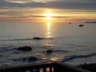 Oceanfront Retreat Brookings area -Ancient Mariner - Brookings vacation rentals