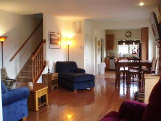 Luxurious, Cozy Mountain Retreat. - Greenville vacation rentals