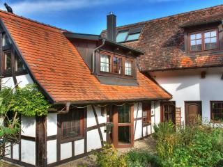 Exclusiv Black Forest Holiday Home near Strasbourg - Rheinau vacation rentals