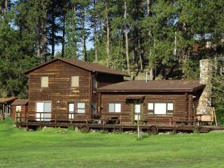 5 Bdr Historic Getaway (Sky View Cabin )Custer SD - Custer vacation rentals