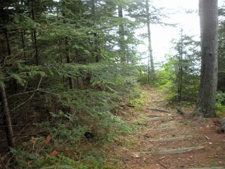 Nice Cottage with Deck and Internet Access - Waldoboro vacation rentals