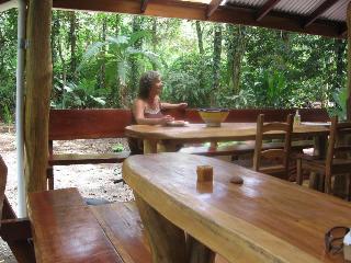 Unique Jungle-beach Home sleeps nine - Manzanillo vacation rentals